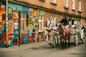 Krakow street art tour. Pic 19