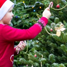 Christmas story. Pic 15