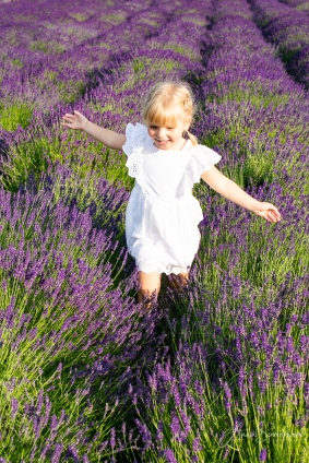 Lavender fairies. Pic 29