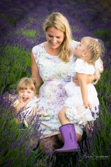 Lavender fairies. Pic 27