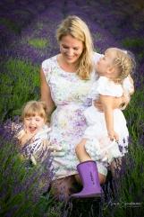 Lavender fairies. Pic 27