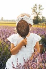 Lavender fairies. Pic 24