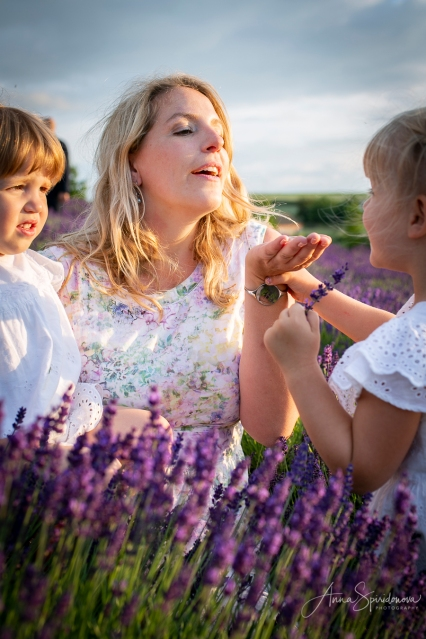 Lavender fairies. Pic 16