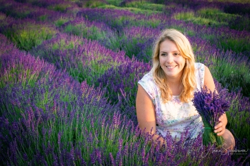Lavender fairies. Pic 10