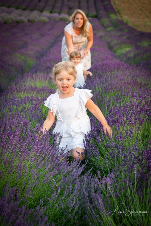 Lavender fairies. Pic 8